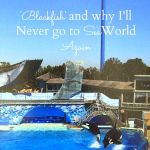 """Blackfish"" and why I'll Never to go to SeaWorld Again"