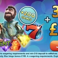 Why Players Choose Top Bingo Sites In UK?