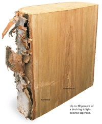 The Way Wood Works: Birch - Popular Woodworking Magazine