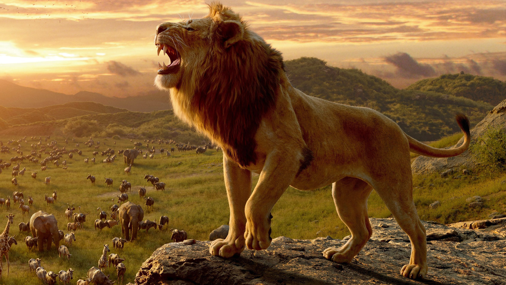 Lion King (2019) – Movie Review   Cinema Lounge Reviews