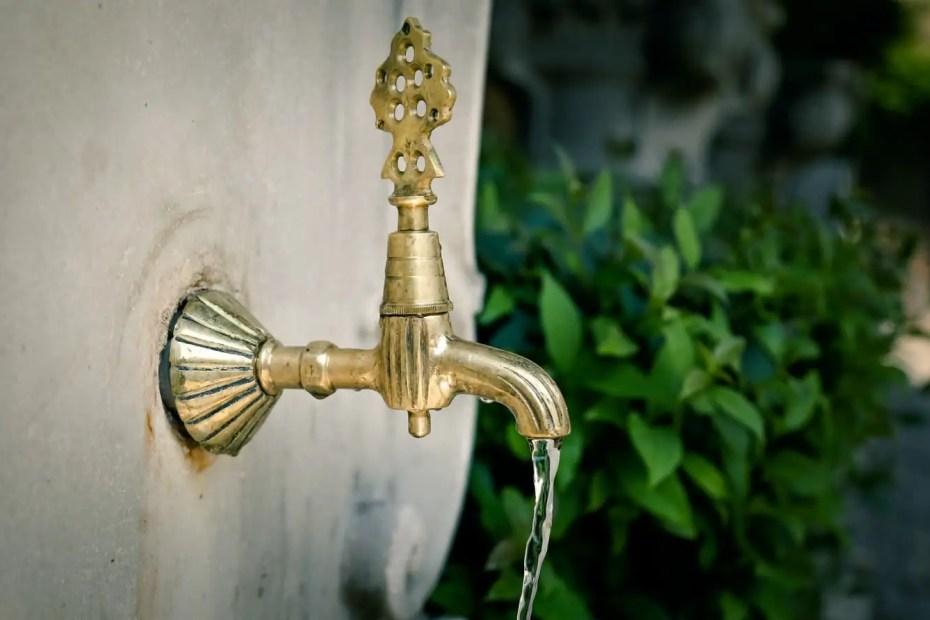 water descaler