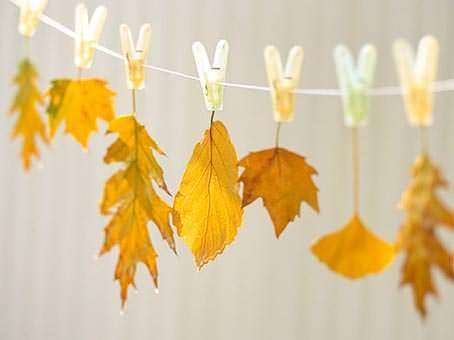 guirnalda-con-hojas-secas1
