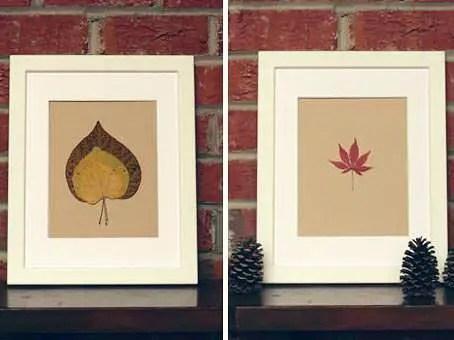 hojas-enmarcadas