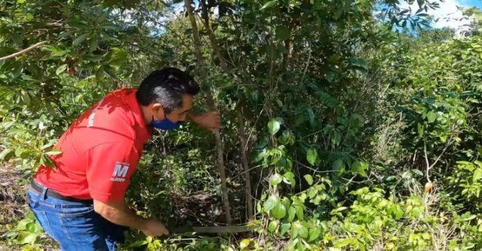 Youtuber extranjero se fue a vivir con una familia maya en medio de la selva