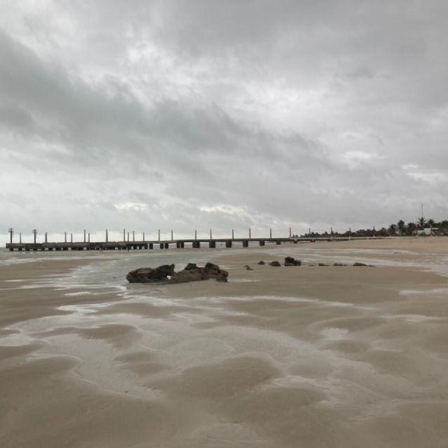 Mar de Sisal se aleja debido al paso de la Tormenta Tropical Grace | PorEsto