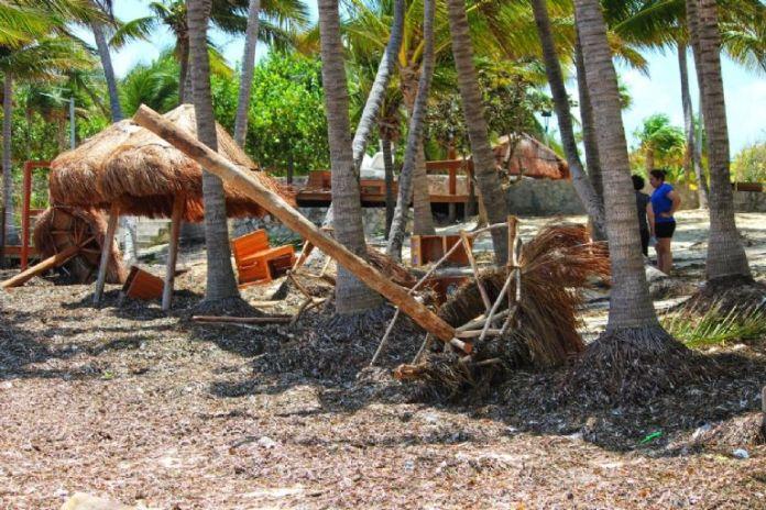 Sargazo cubre arenales de Playa Coral en Cancún después del Huracán Grace:  FOTOS   PorEsto