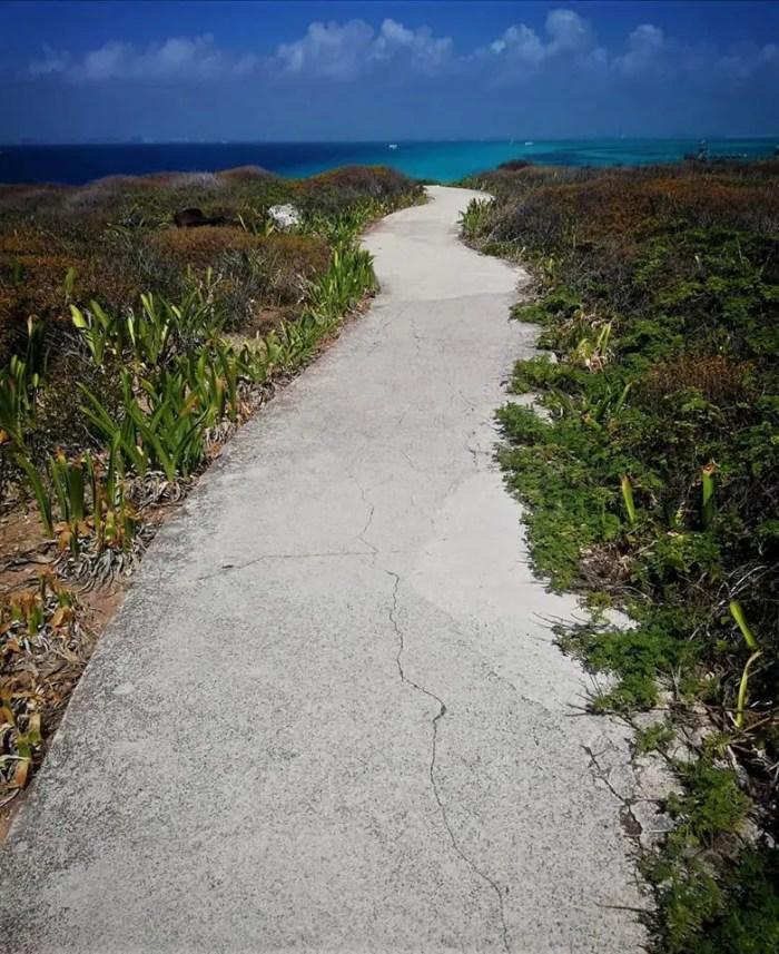 Camino en la Punta Sur de Isla Mujeres