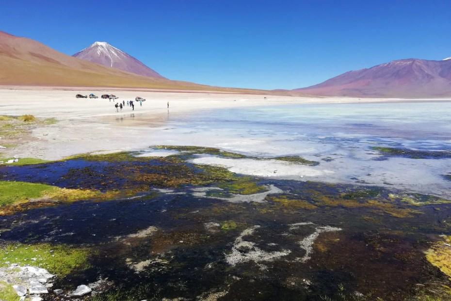 Laguna Blanca, Uyuni.