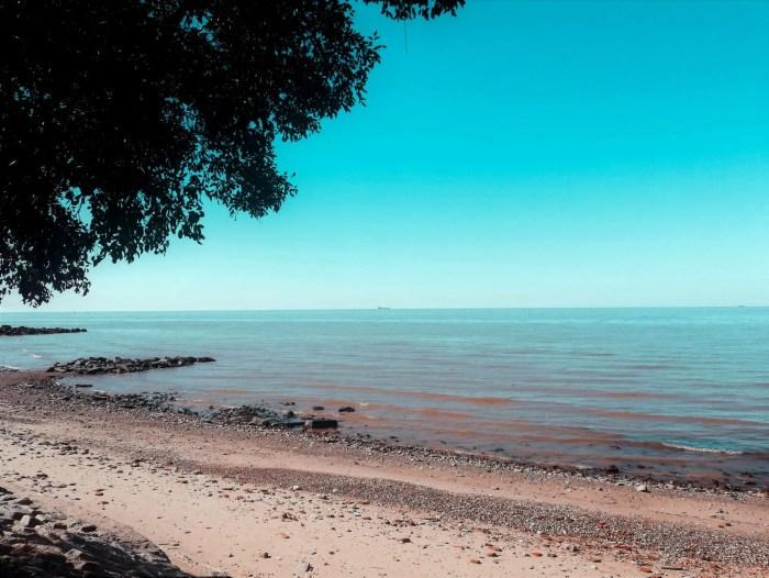 Río de la Plata en la Reserva Ecológica Costanera Sur.