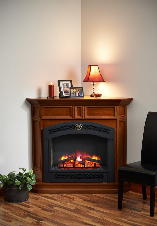 Living Room with Fireplace Electric