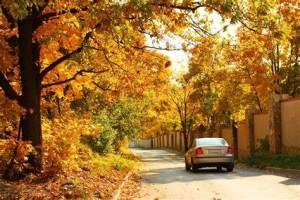Planifier un beau voyage en voiture à l'automne