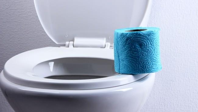 Letem světem toalet