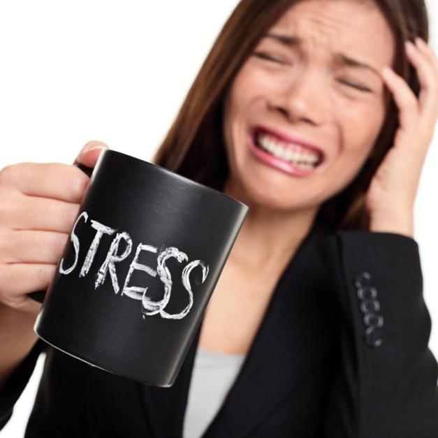 Nos dias de hoje, uma pessoa não estressada é uma raridade. O mau é que ficar nesse estado prejudica a saúde. A sua pressão arterial pode subir, o sentimento de raiva libera toxinas. Além do mais, o hormônio do stress, o cortisol, provoca aumento de peso.