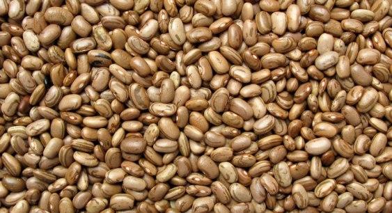 O feijão é turbinado de fibra solúvel, que aumenta a sensação de saciedade. Uma boa dica é misturá-lo ao arroz integral. Uma concha por dia é o recomendado.