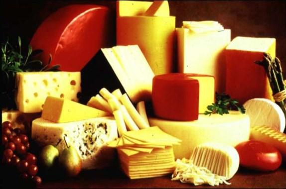 Esse não é um OGM mas sim um alimento em que um OGM foi utilizado no seu processamento. A quimosina, enzima essencial para a coagulação de laticínios, era antes extraída do estômago do cabrito, num processo cruel. Micro-organismos como bactérias e fungos foram modificados para que produzissem a tal enzima. A quimosina é, entretanto, eliminada ao final de processo de fabricação do queijo e, por isso, o produto escapa da rotulação.