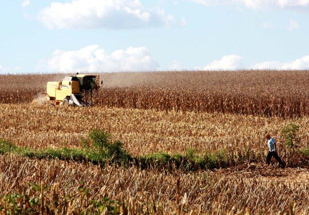 Valor Bruto da Produção Agropecuária de Santa Catarina cresce 8,8% e chega a R$ 33,6 bilhões
