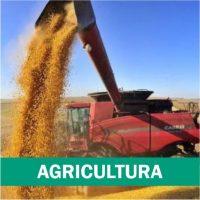agricultura-portal-dbo