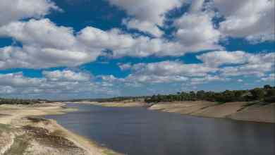 Photo of Alcácer do Sal: se não chove, as barragens não enchem e quem paga a fatura da água mais cara são os produtores de arroz