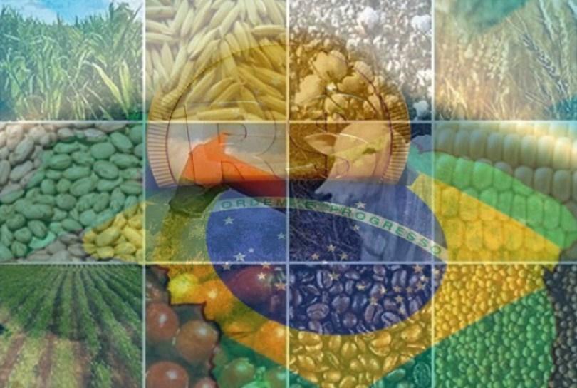 Queda do PIB agropecuário reforça necessidade de apoio ao setor