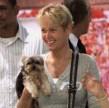 xuxa_dudu_yorkshire_terrier_cachorros (9)