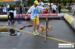 sp-dog-run-67