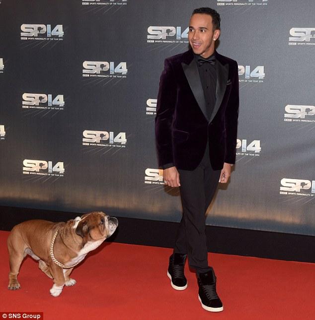 Hamilton e o buldogue inglês Roscoe no tapete vermelho. (Foto: Reprodução / Daily Mail UK)