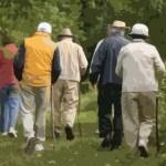 Prevquedas Brasil – Programa Multifatorial de Prevenção de Quedas em Pessoas Idosas que vivem na comunidade