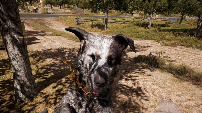 Far Cry® 5 20180327144019