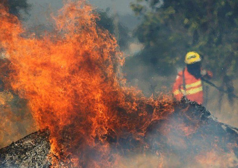 """[Vídeo] Em Londres, manifestantes protestam pela Amazônia e pedem para salvar """"pulmões em chamas"""""""