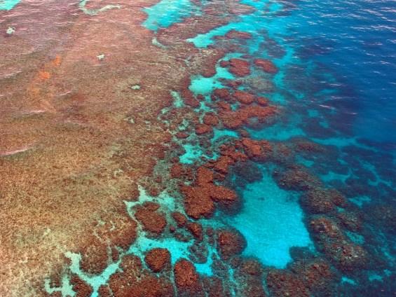 Grande Barriera Corallina meraviglia della natura
