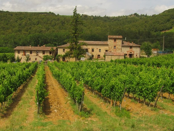 i vini del Chianti