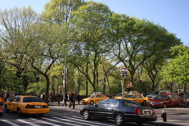 Esercizi fisici Central Park