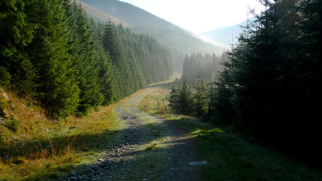 La via incantata