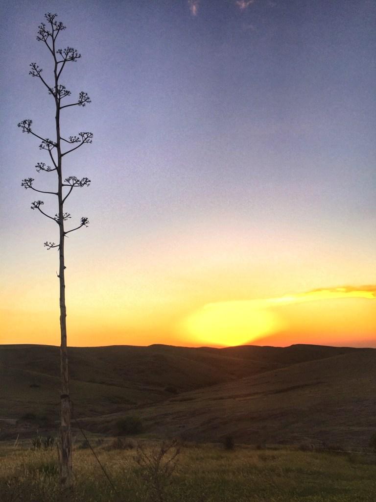 tramonti deserto Marrakech