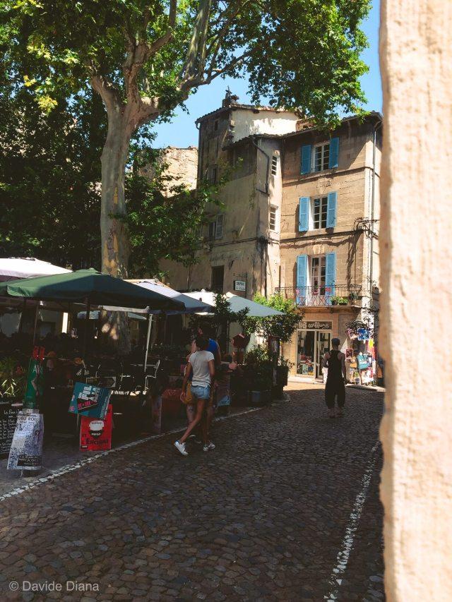 Cosa fare ad Avignone