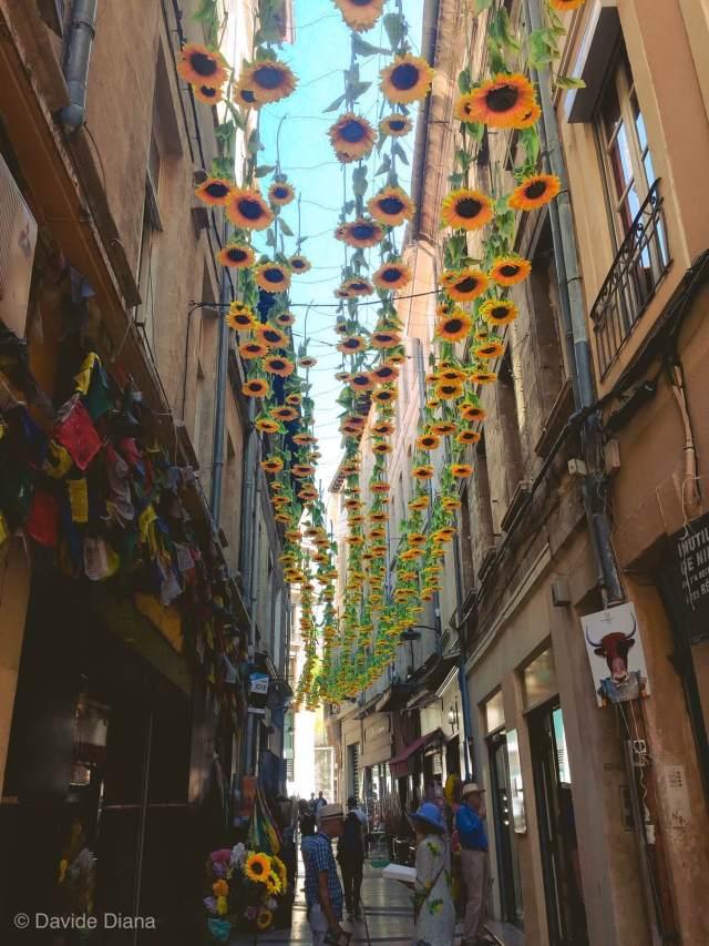 La via più bella di Avignone
