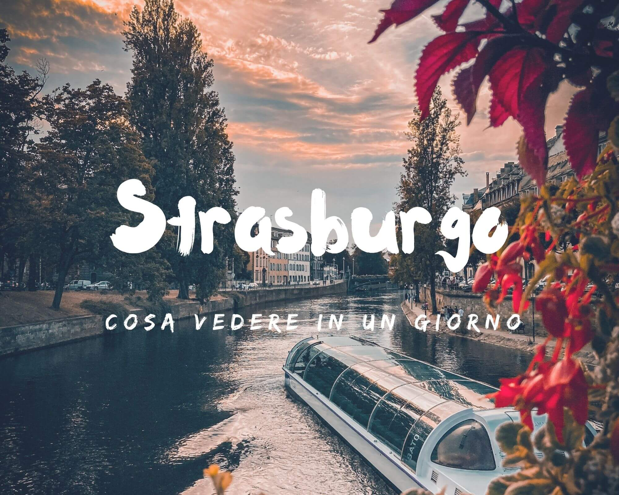 cosa vedere a Strasburgo in un giorno