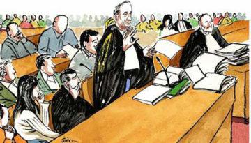 Cuoco cita un'anatra in tribunale