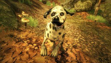 Foto de Fable II: Veja algumas imagens de See The Future [DLC]