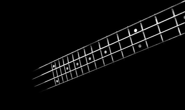 __bass___by_zyphadellus