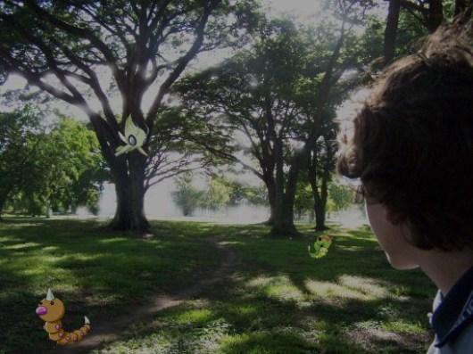 viridianforest