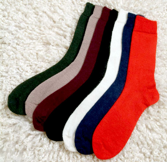 socks_patterdale_large