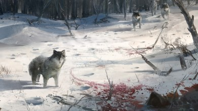 Photo of Wallpaper do dia: Assassin's Creed III!