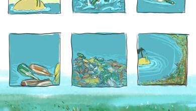 Photo of Reflexão | Segregações por excesso de opções…