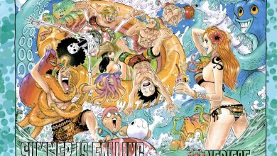 Photo of One Piece 796 | Soldier-san's Decision