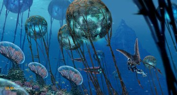 Subnautica - Coral Reef Zone The Suspended Stones