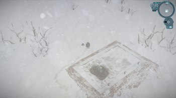 Impact Winter (50)