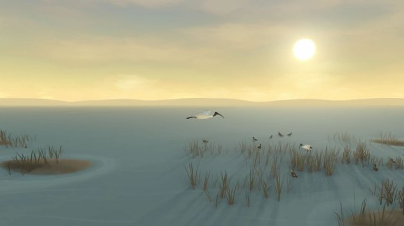 Storm Boy Game ibis-1