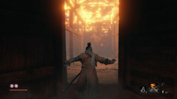 Sekiro Shadows Die Twice (19)