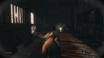 Sekiro Shadows Die Twice (28)